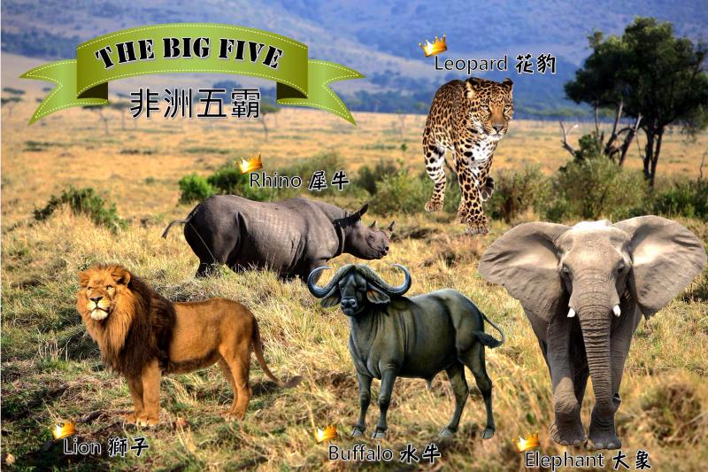 The Big Five copy